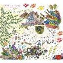 【オリコン加盟店】■送料無料■川本真琴 2Blu-spec CD【The Complete Singles Collection 1996〜2001】10/2/24発売【楽ギフ_包装選択】