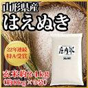 【令和元年度産】山形県産 はえぬき 玄米 約24kg(62-Q)