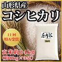 【令和元年度産】山形県産 北限のコシヒカリ 玄米 約24kg(62-S)
