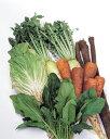 野菜セット1回分(8品~10品)