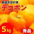 【送料無料】愛媛吉田町産デコポン【秀】5kgたっぷり満杯