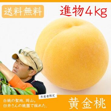 臼井桃園 黄金桃 進物用 4Kg 10〜15玉 栽培園限定商品 送料無料 希少品のため収穫予定数量完売と同時に販売終了致します