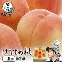 岡山 はなよめ桃 進物用 1.5Kg 6〜8玉 6月収穫の早生桃 送料無料 父の日に最適 【早期ご予約受付中】 期間限定 ポイント5倍