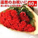 還暦祝いに赤いバラの花束ギフト60本!生産者直送だからバラの鮮度が違う!還暦の赤い薔薇ならこれ 還暦御祝い 花束還暦用 記念日 産地直送の薔薇 生産者直のばら 鮮度の良いバラ【送料無料】 期間限定 ポイント5倍