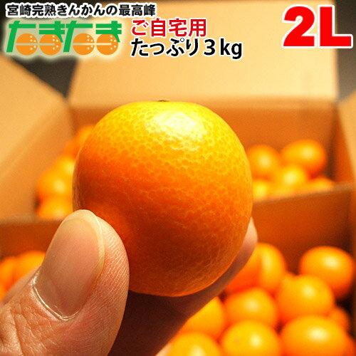 フルーツ・果物, みかん 2L3kg