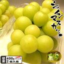 岡山県産 名人のシャインマスカットご自宅用パック 合計800g前後 期間限定 ポイント5倍
