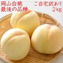 岡山県産白桃 最後の品種 ご自宅訳あり 2Kg 5〜8玉 栽培園限定商品 送料無料 希少品のため収穫予定数量完売と同時に販売終了致します 期間限定 ポイント5倍