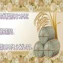 300円OFFクーポン配布中【送料無料】 米 20kg 白米 コシヒカリ 一等米 宮城県産 令和元年産 /5kg×4袋/ 2