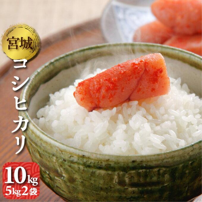 コシヒカリ 10kg(5kg2袋) 宮城県産 令和2年 送料無料(一部除く) 精米 ...