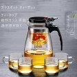 ガラスポット ティーポットティーカップ 耐熱透明急須水出し茶ポット お茶急須 耐熱ガラス 茶器 コーヒーポット PC材質 おしゃれ
