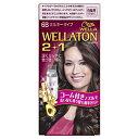 HFCプレステージ WELLATON(ウエラトーン) 2+1 ミルキーEX 6B 〔カラーリング剤〕