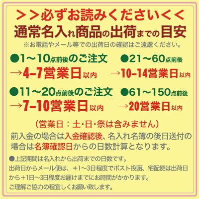 大筆、小筆に名入れできます!【送料無料】志昌堂ケース付き書道用品10点セット名入れ代無料!