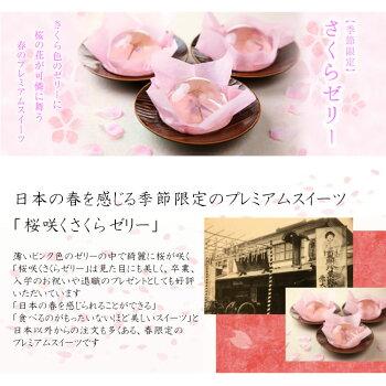 桜咲くさくらゼリー6個入