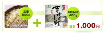 有機自然乾燥(玄米+芽吹き小町)
