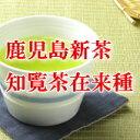 送料無料鹿児島茶・知覧茶在来種昔のお茶はうまかったそう感じていたらこのお茶です【新茶】鹿...
