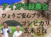【定期購入】平成28年産!「アイガモ米」玄米5kg 農薬や化学肥料を一切使わない栽培方法のコシヒカリ100% あいがも米 合鴨米