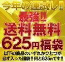 送料無料 最強 625円福袋 今年の運試しに是非 ※お一人様1点限り 【fuku-100】