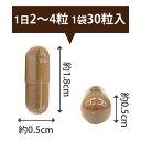 【送料無料】4袋セット クロワールゴールド 4袋(1袋30粒入×4)【CROIRE】サプリメント サプリ 抗酸化サプリ アミノ酸サプリ サプリメント ビタミン サプリメント ミネラル サプリ 活性酸素 除去 メシマコブ βグルカン SOD値 2