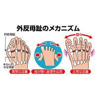 新型外反母趾サポーター(1足組)