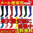 【サッカーソックス】【メール便送料無料】PUMA サッカーゲームソックス プーマ 子供 Jr ジュニア サッカーソックス 靴下 900400 ストッキング 練習着 サッカーウェア フットサル ウェア