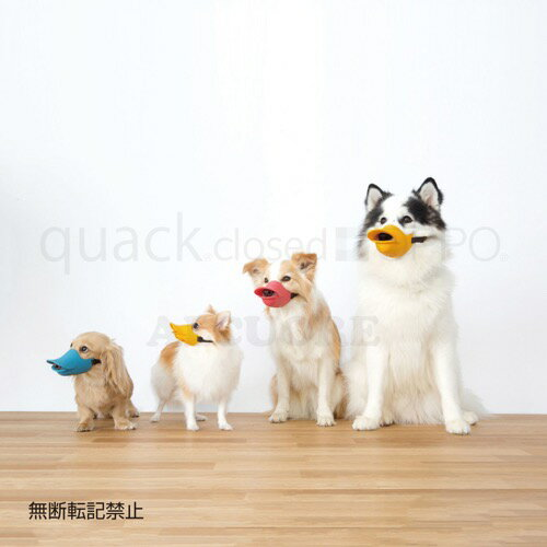 PICK UP BRAND>OPPO(オッポ)>quack closed(クァック クローズド)