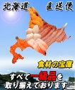 お中元 ギフト 北海道直送便 数の子 松前漬 250g【冷凍】 2