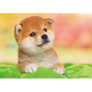 拼图BEV-P108-839宠物/动物Poka Poka天气108件拼图礼物生日礼物