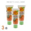 【歯磨き粉】ホームジェル オレンジ 3本 65g(う蝕予防ジ