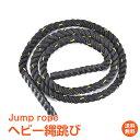 【安心の1年保証付】ヘビー縄跳び ジャンプロープ 運動 ダイエット 筋トレ トレーニング 保護帯付き 2.4kg 3m 二の腕 太もも ふくらはぎ 体幹 握力 de044