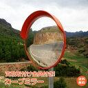 【安心の1年保証】カーブミラー 家庭用 丸型 42cm 鏡 安全ミ...