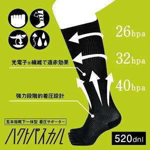 五本指靴下一体型着圧サポーターハクトパスカル