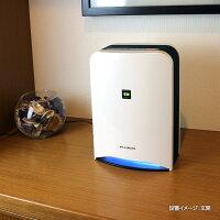 空気消臭除菌装置ブルーデオMC-S1設置イメージ:玄関