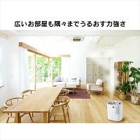 アイリスオーヤマサーキュレーター加湿器グレー/ホワイトHCK-5519【メーカー取寄】