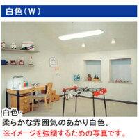 ☆東芝ラピッドスタート形蛍光ランプ110形白色ワットブライター【10本入り】FLR110HWA100