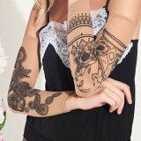【フリー】送料無料 アームカバー レディース 可愛い タトゥー カバー TATOO tatoo スリーブ 腕 両腕【フォーサイシア】(トラスパレンツェ)