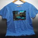 ハワイ限定!ディズニー&クレイジーシャツのコラボTシャツ女性用 ブルーハワイ染色※日本のワンサイズ下が目安です。例:日本サイズMの場合、アメリカSサイズ。※北海道・九州は1万円以上で送料無料!(沖縄のぞく)