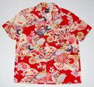 アロハシャツ/衣櫻(衣桜・ころもざくら)/男性用/女性用/長袖/上着