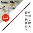 エリートグリップ 1SPEED TT1 01OR DVD内包 ワンスピード ゴルフ スイング練習 elite grips