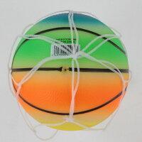 イグニオ トイボール 蓄光ボールミニ バスケット (9300052008) IGNIO
