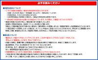 イグニオ(IGNIO)卓球台国際規格サイズセパレート式エキスパート&アスリート(移動キャスター付)【代引可能】(IG-2PG0016)