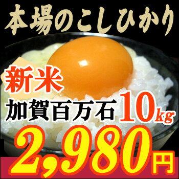 最も日本人に愛されている美味しさ、お米の横綱コシヒカリ最高の環境で育った石川県産こしひか...