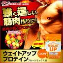 【送料無料】アルプロン ウエイトアッププロテイン 1,200g フルーツミックス味 マルトデキストリン