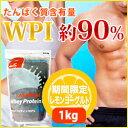 【プロテイン】【ホエイプロテイン】【たんぱく質含有量約90%】筋トレ・筋力増強・体作りの強...