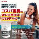 【シェイカーセット】 プロテイン アルプロン ホエイ WPC 1kg 50食分 チョコレート 送料無料 2