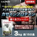 [DEALポイントバック] [送料無料] カゼインプロテイン 3kg(約150食分) 選べるフレーバー(チョコ プレーン ストロベリー)【winter_sp_d】