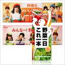 【非売品超激レア】AKB48野菜シスターズポップオマケ付き【カゴメ】 野菜一日これ一本 200ml(2...