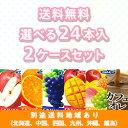 【エルビー】ソフトドリンク 送料無料 選べる2ケースセット (24本入...