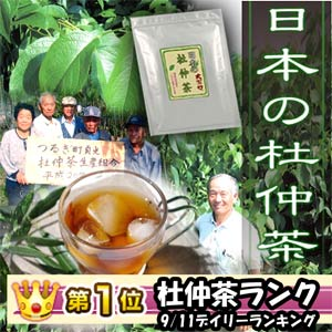 国産 送料無料 日本の杜仲茶[杜仲茶]送料無料 国産 日本の杜仲茶3g×60包 胆汁酸ダイエットで...