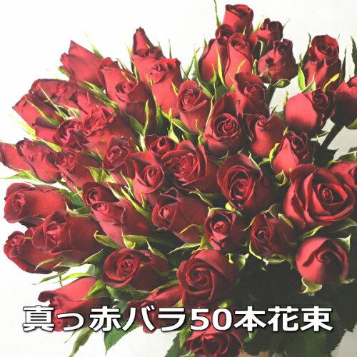 送料無料!4時まであす楽OK!赤バラ花束50本【...