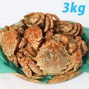 【今季販売終了】〔オス〕 青森むつ湾 とげくり蟹 3kg(10〜13杯前後) 【代引不可】